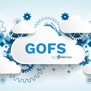 Introducing GoFS