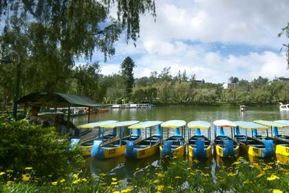 碧瑤遊學景點介紹-Baguio-Sunshine-Park