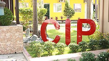 CIP語言學校