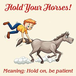 如何學好英文發音-horse