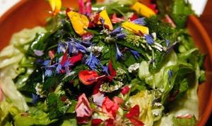 ⏰ Menu con fiori e frutti dimenticati per 2, 3 o 4 persone al Ristorante Fava (sconto fino a 56%). Prenota&Vai!