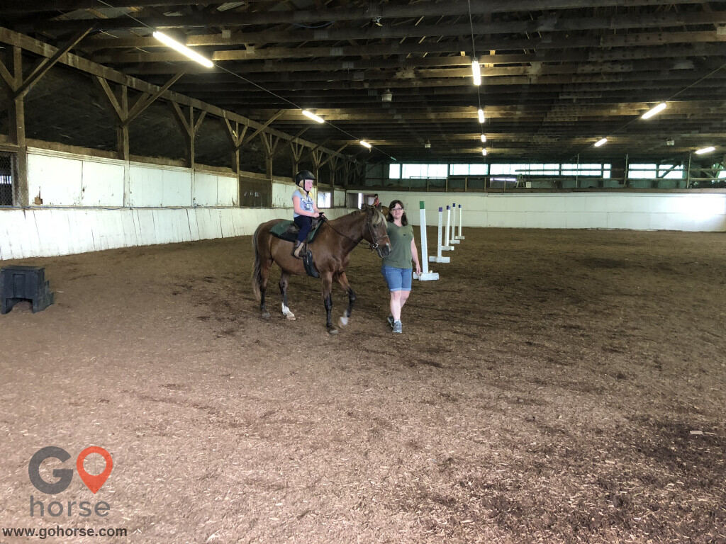 Gold Leaf Stables llc Horse stables in Townsend DE 3