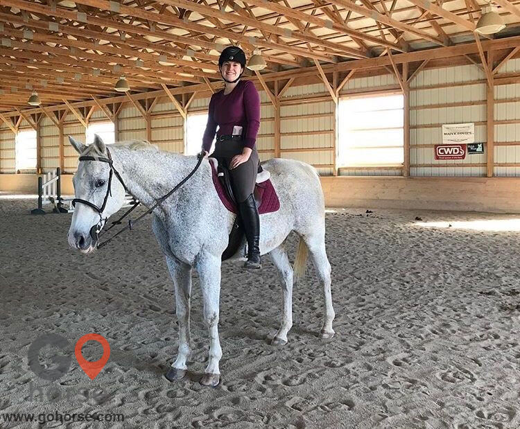 Top Line Stables, LLC Horse stables in Atglen PA 12