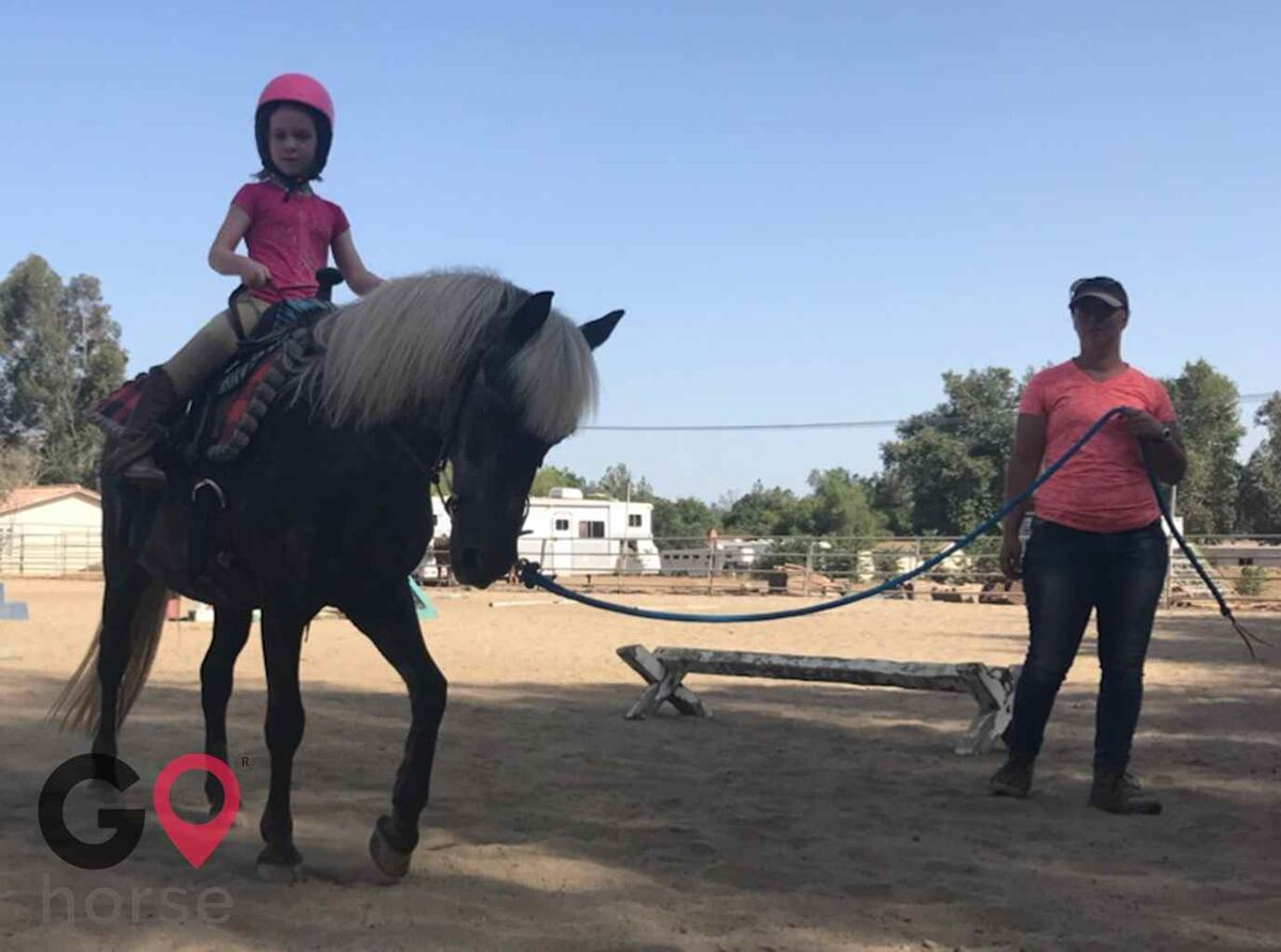 Back to Basics Horsemanship (horse trainer) a horse business in Poway CA 4