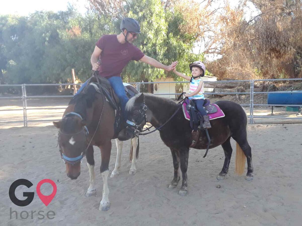 Back to Basics Horsemanship (horse trainer) a horse business in Poway CA 12