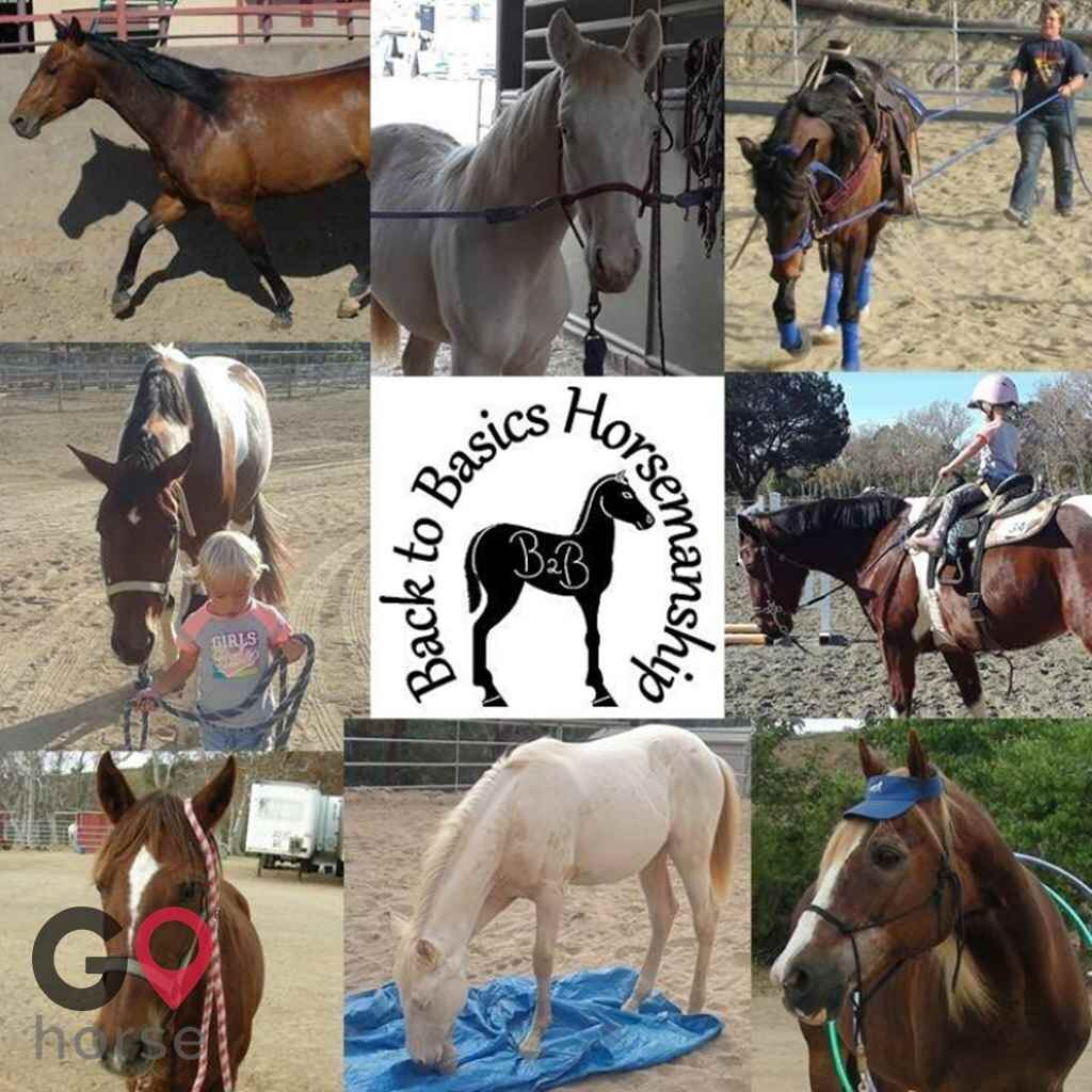 Back to Basics Horsemanship (horse trainer) a horse business in Poway CA 2