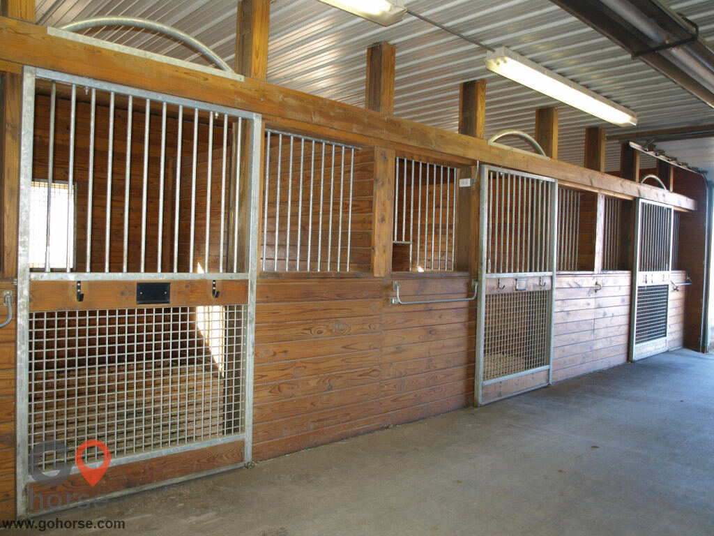 Tolland Falls Ventures Horse stables in Sedalia CO 4