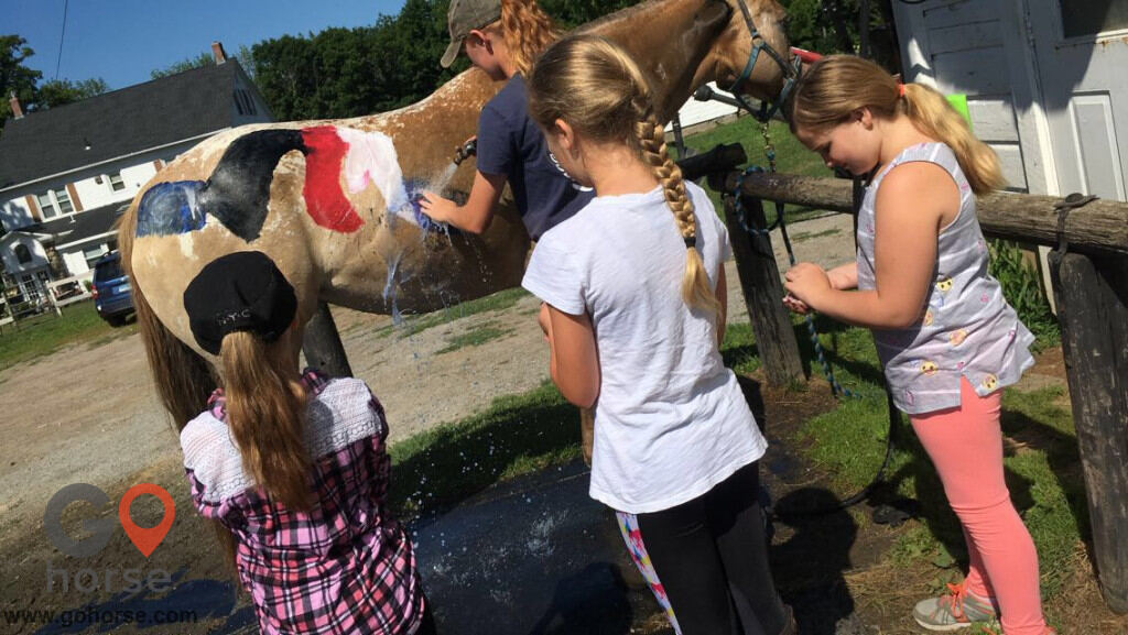 Grandview Farms Equestrian Center Horse stables in Harwinton CT 8