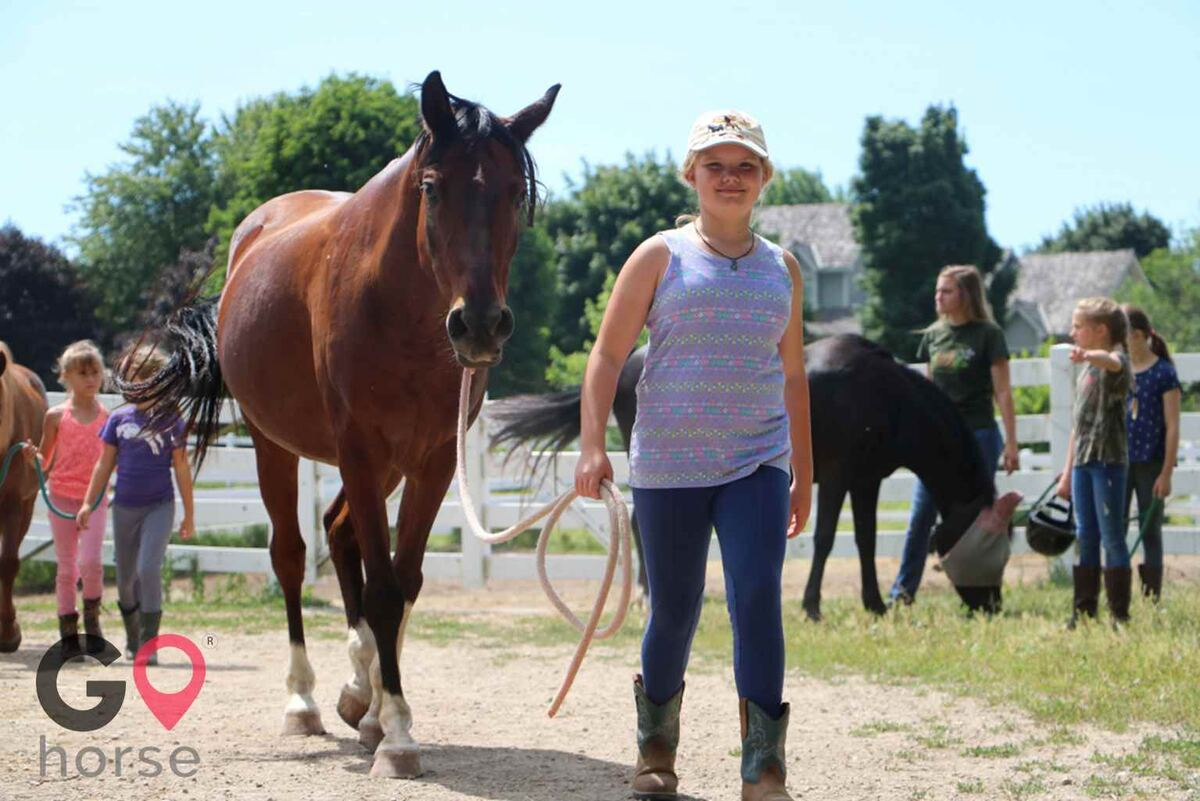 Meadowsweet Ranch Horse stables in Spring Grove IL 8