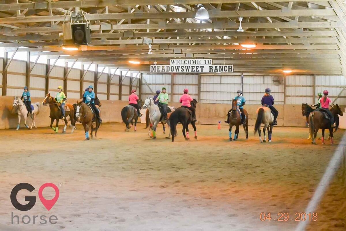 Meadowsweet Ranch Horse stables in Spring Grove IL 10