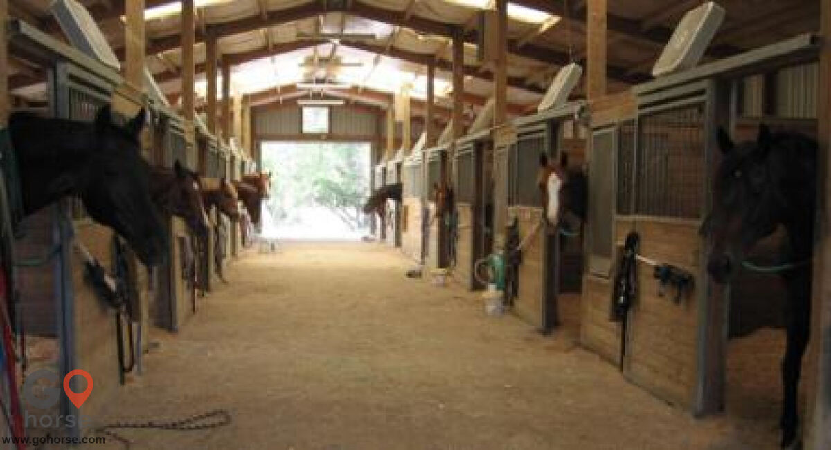 Colonial Equestrian Center Horse stables in Princeton TX 20