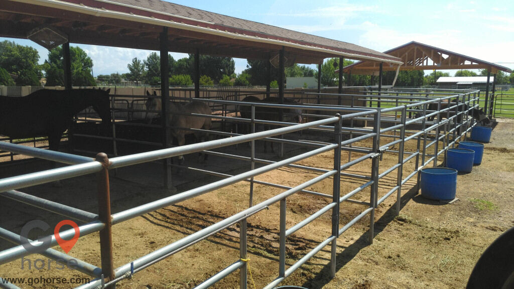 Stable Acres Horse stables in Gilbert AZ 5