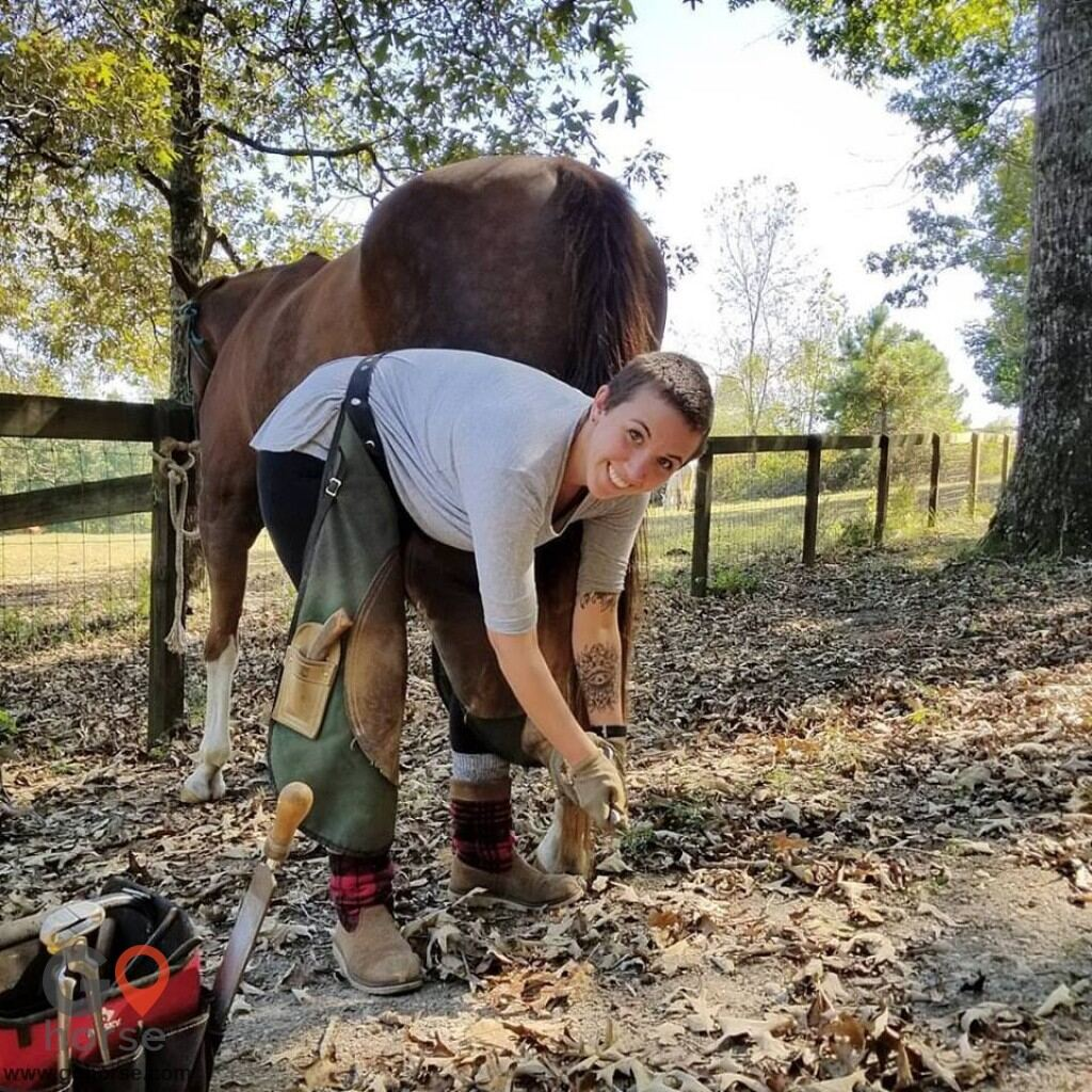 Equine Barefoot Trimming Farrier in Decatur GA 1