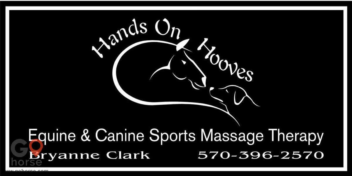 Hands on Hooves Equine Sports Massage Therapy Equine Health in Chester County PA 15