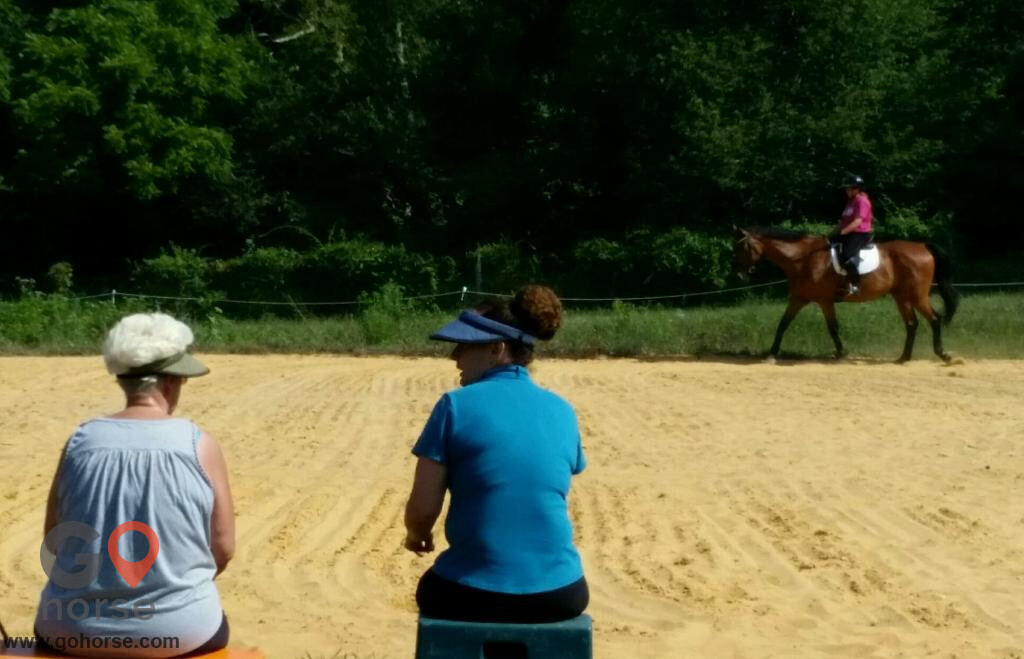 High Point Farm Horse stables in Eastview KY 7