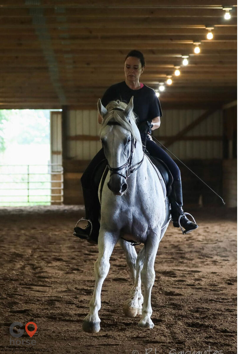 High Point Farm Horse stables in Eastview KY 3