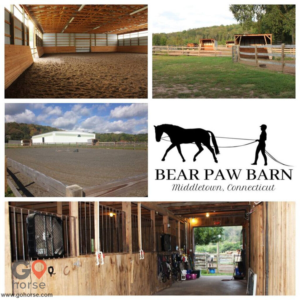 Bear Paw Barn Horse stables in Middletown CT 1