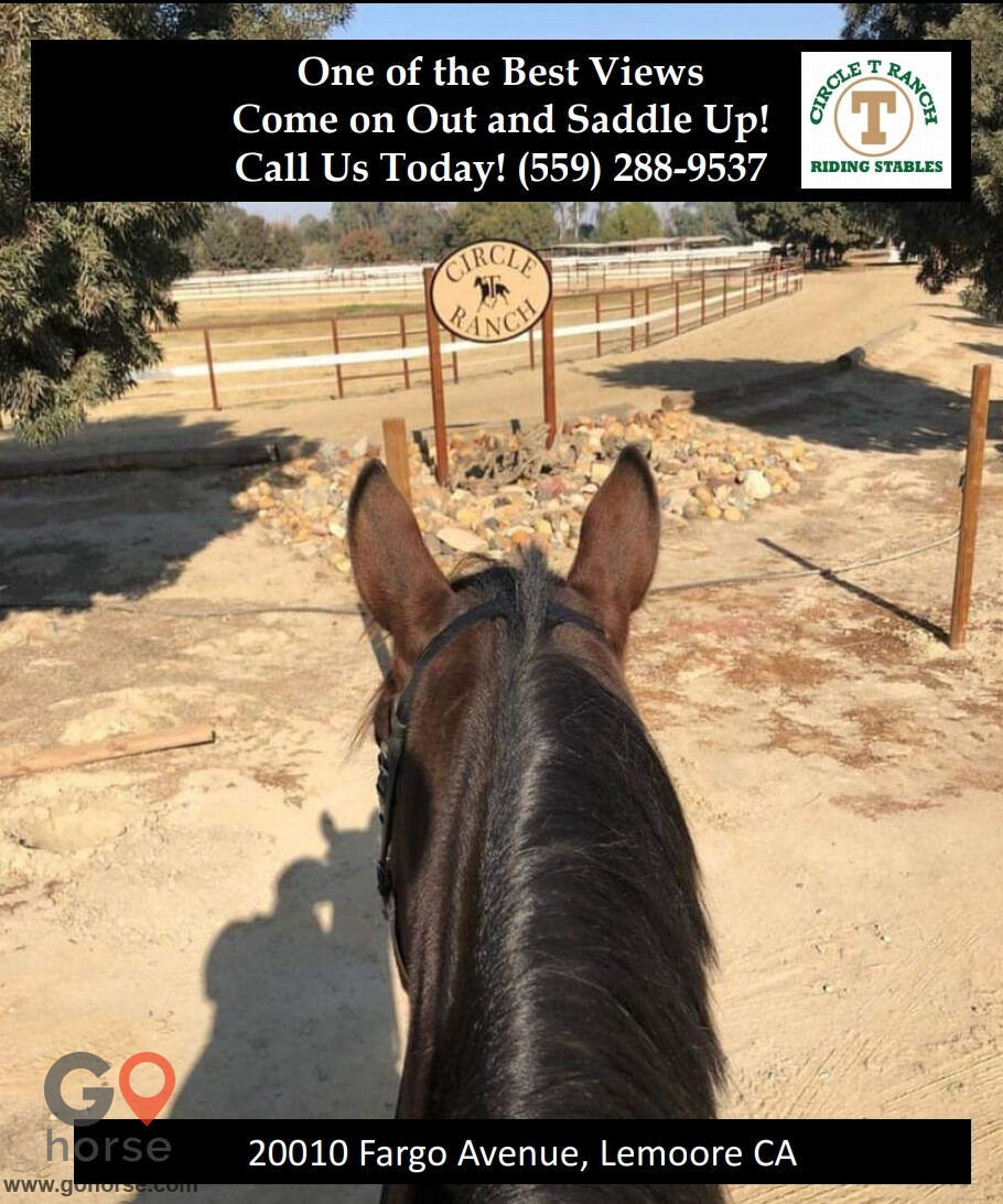 Circle T Ranch Horse stables in Lemoore CA 16