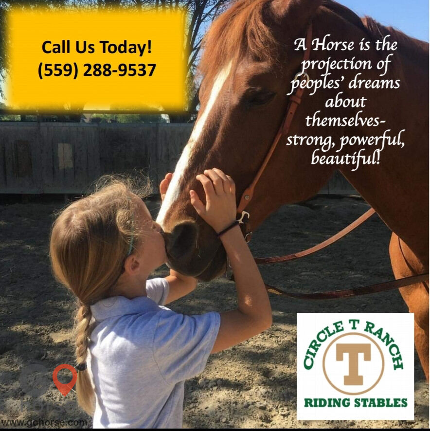 Circle T Ranch Horse stables in Lemoore CA 17