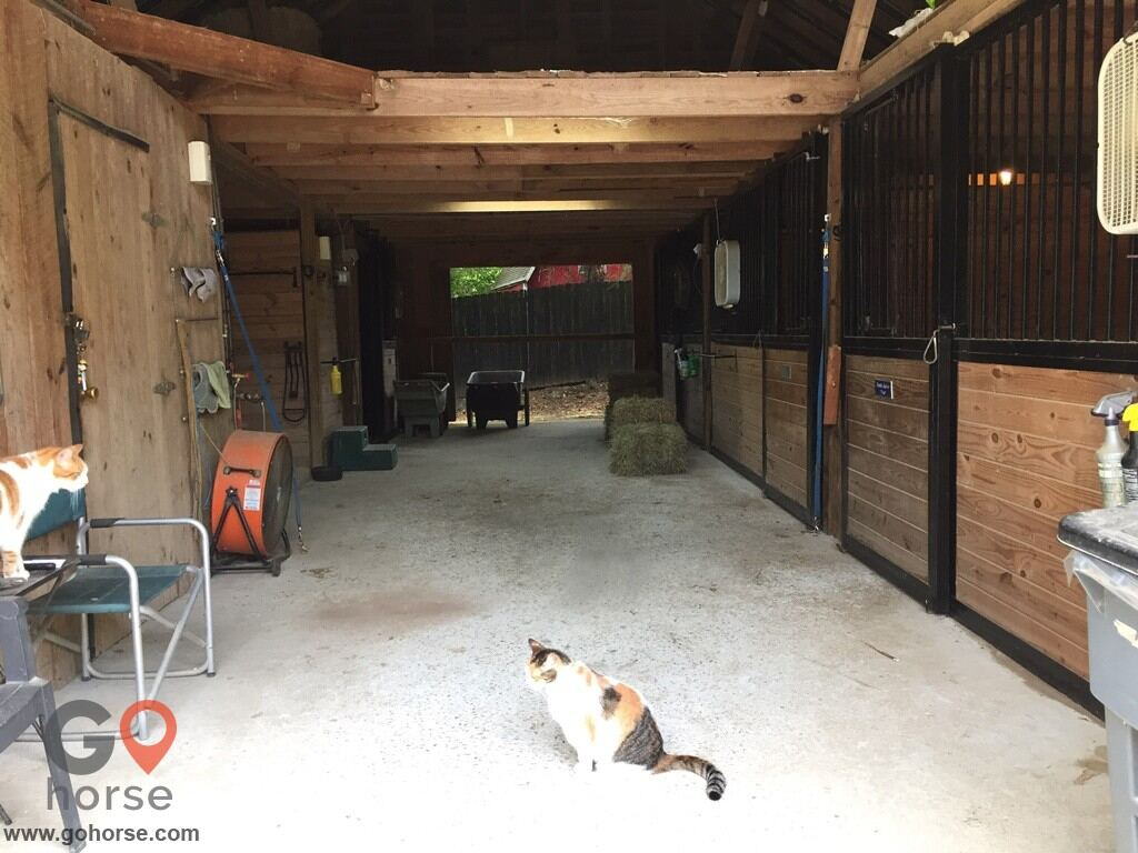 Silver Lining Stables Horse stables in Powder Springs GA 3