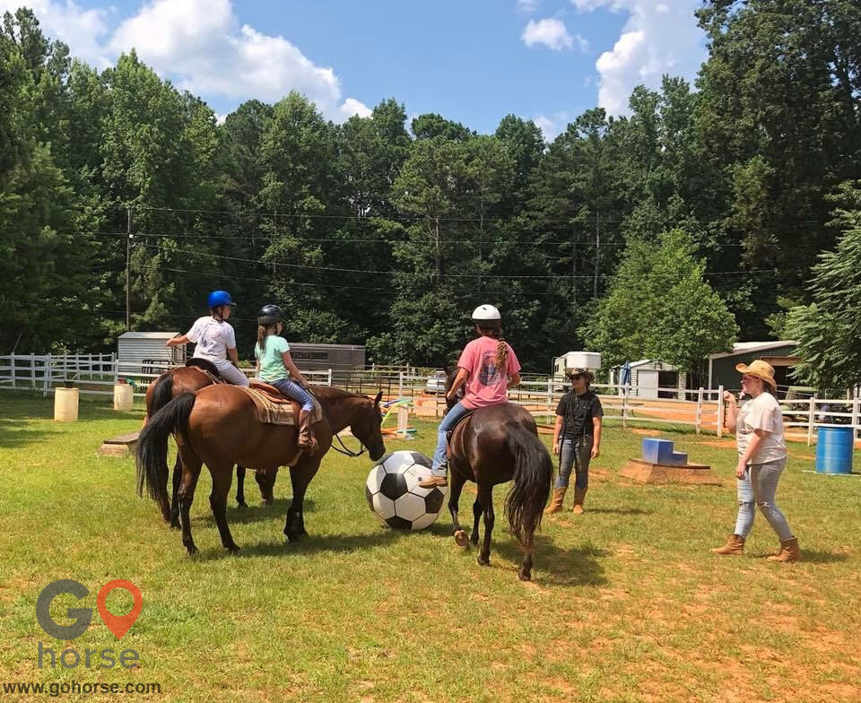 LauraLeigh Farms Horse stables in Dallas GA 6