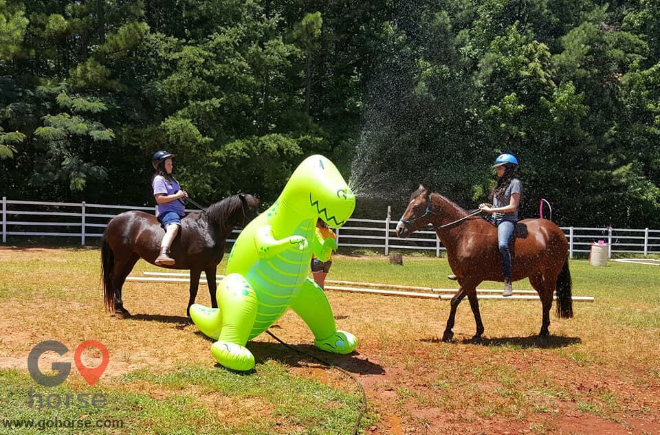 LauraLeigh Farms Horse stables in Dallas GA 9