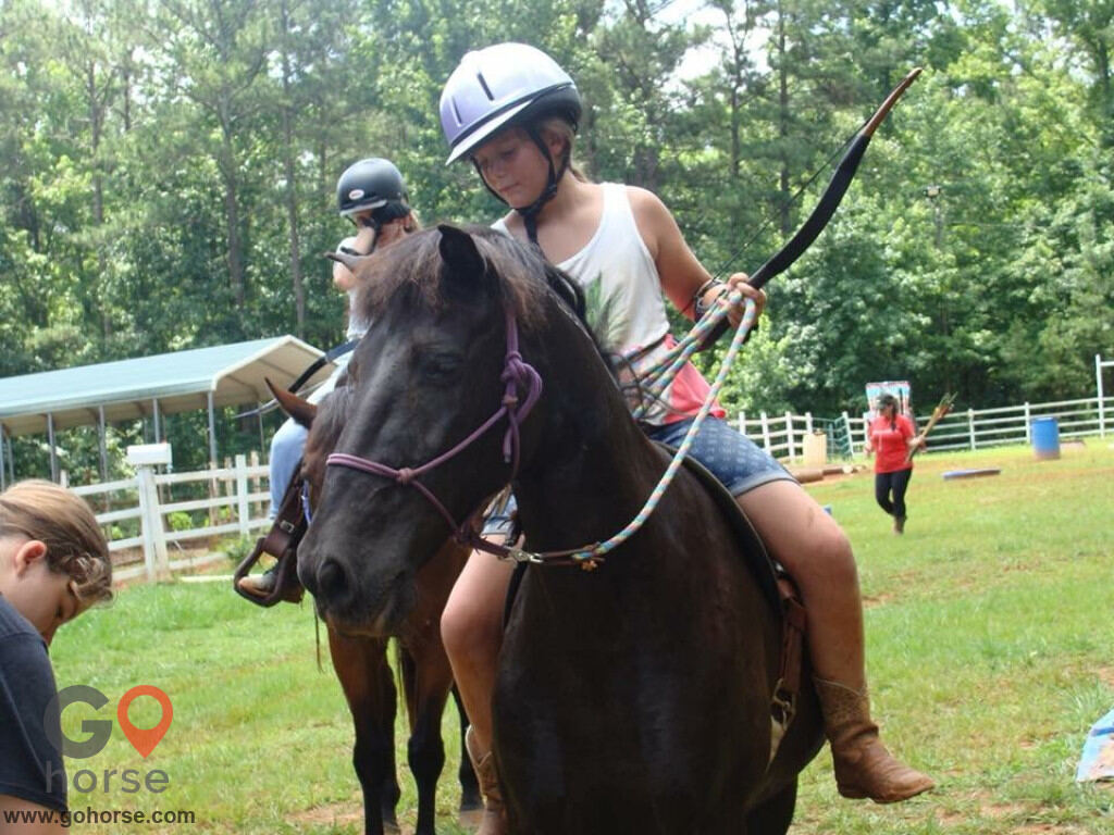 LauraLeigh Farms Horse stables in Dallas GA 5