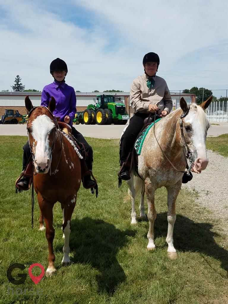 Turn Crest Stable Horse stables in Kasson MN 5