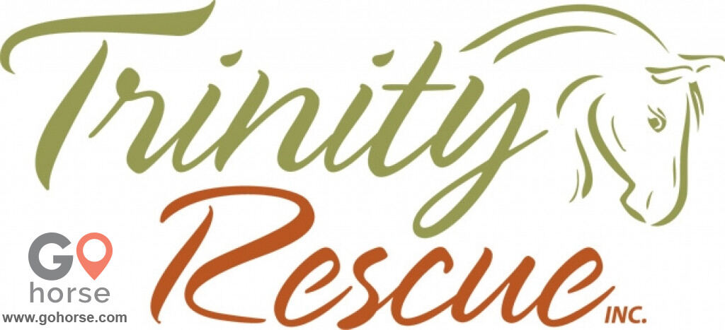 Trinity Rescue and Equine Sanctuary Horse stables in Acworth GA 18