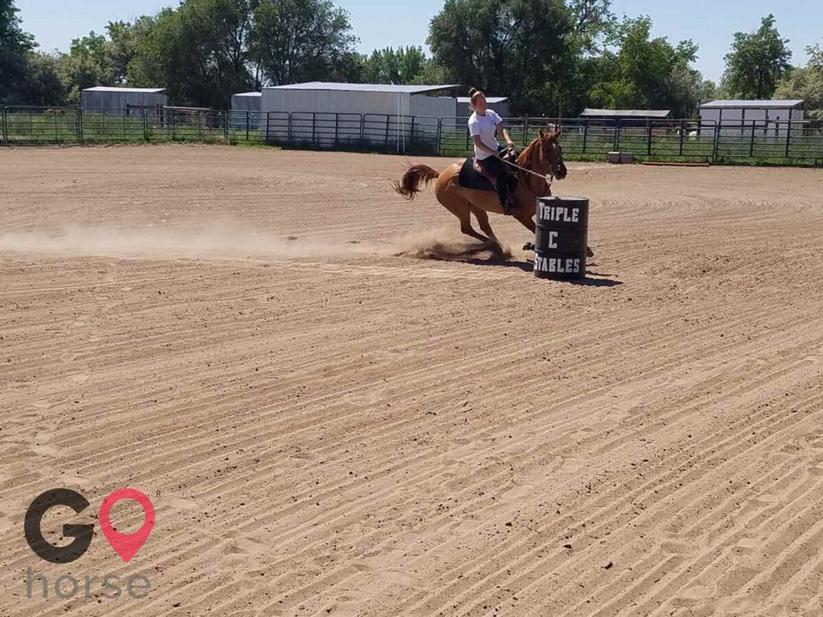 Triple C Stables Horse stables in Fort Lupton CO 16