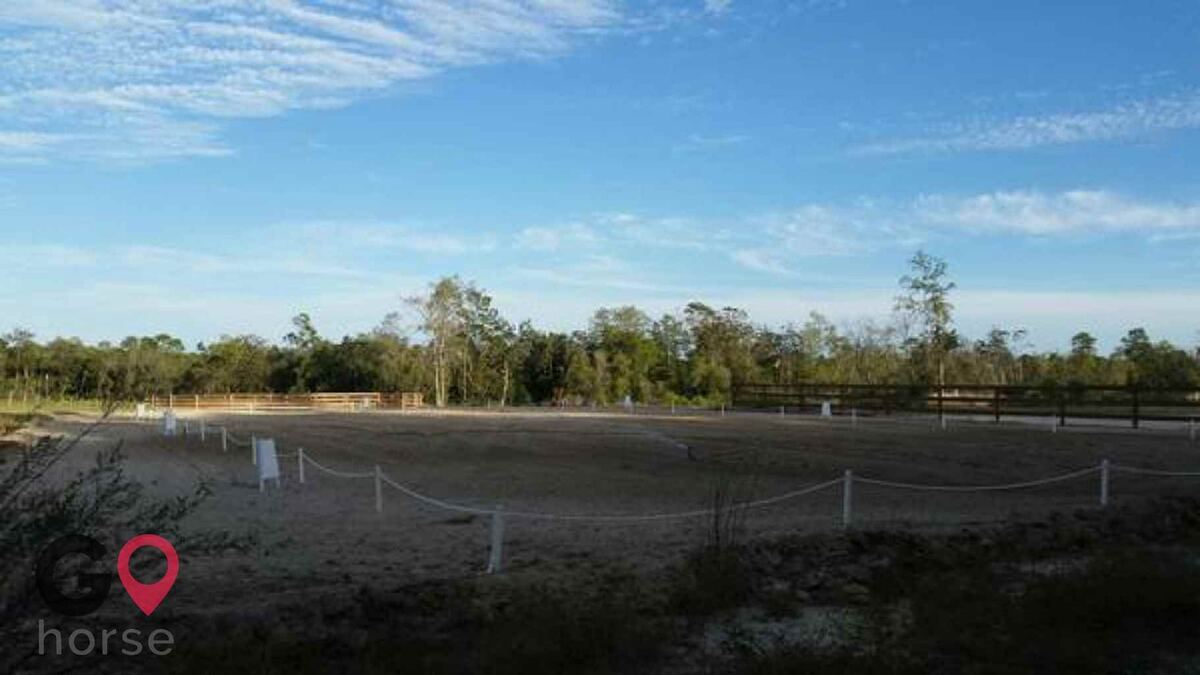 Stormwynd Equestrian Center Horse stables in Defuniak Springs FL 4