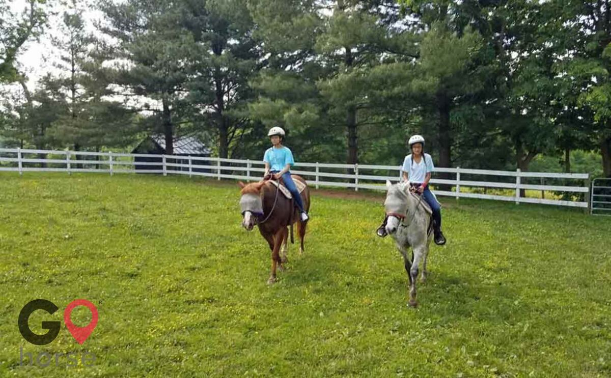 First Farm Inn Horse stables in Petersburg KY 1