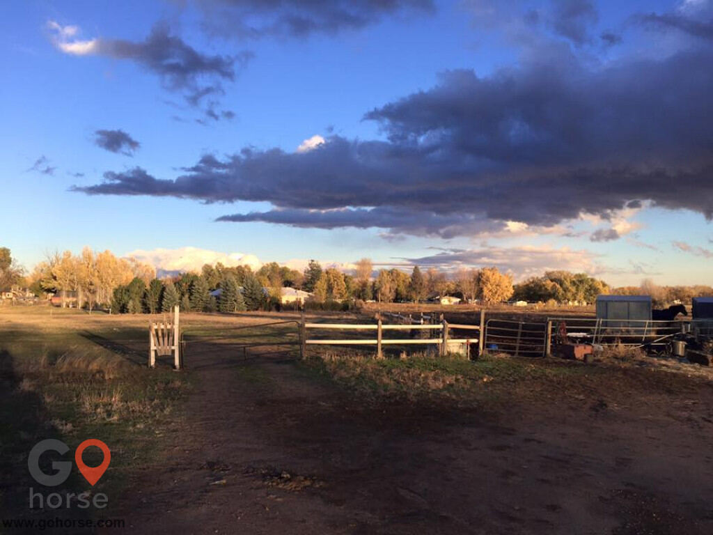 Four Winds Horse stables in Fort Collins CO 7