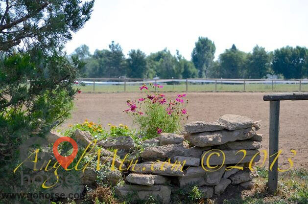 Four Winds Horse stables in Fort Collins CO 2
