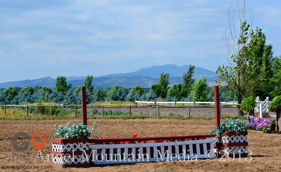 Four Winds Horse stables in Fort Collins CO 3
