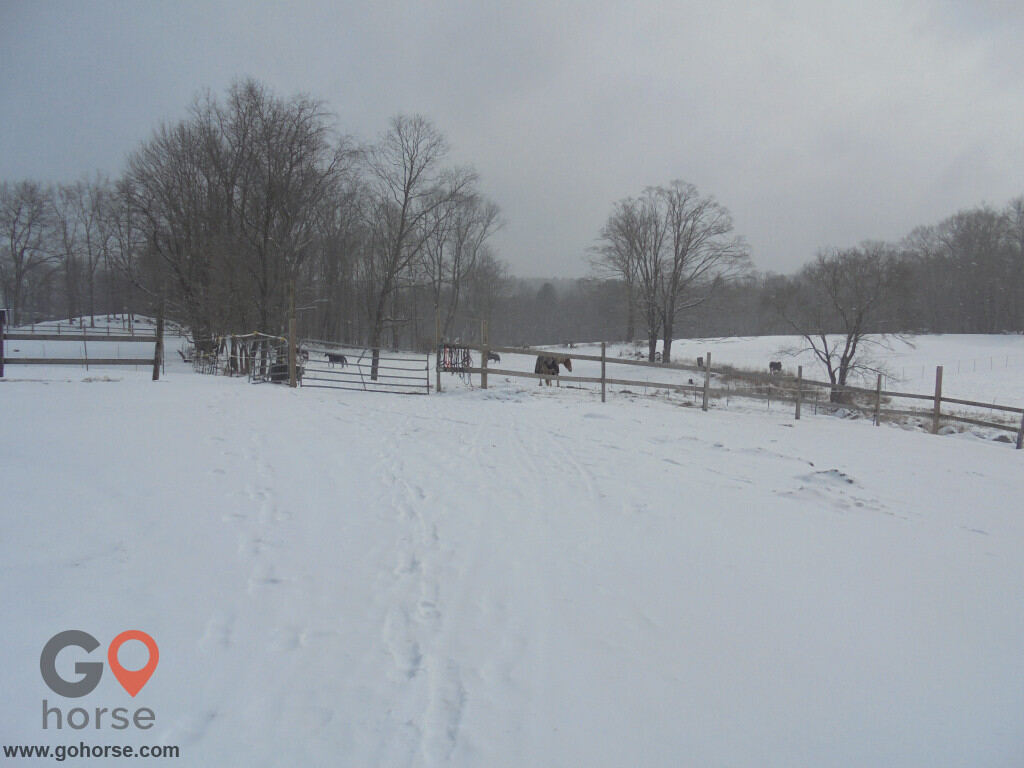 Grandview Farms Equestrian Center Horse stables in Harwinton CT 1