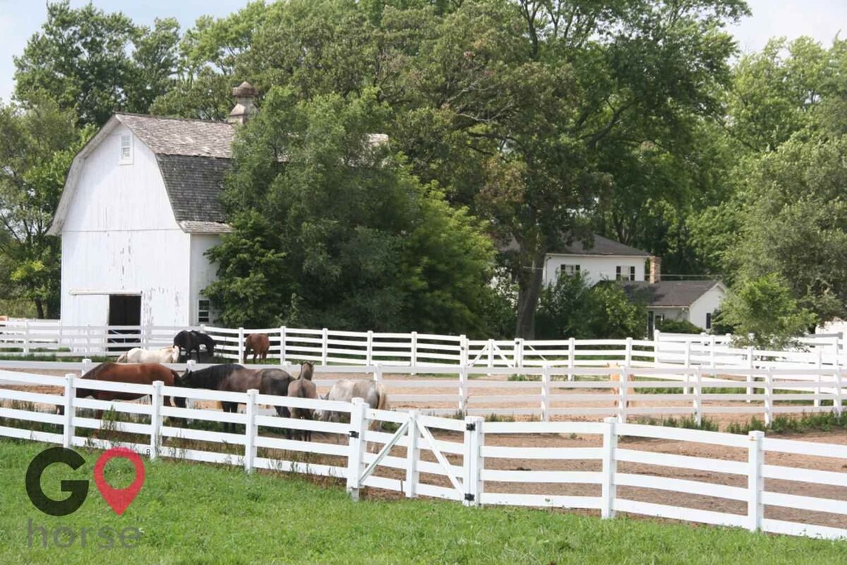 Meadowsweet Ranch Horse stables in Spring Grove IL 1
