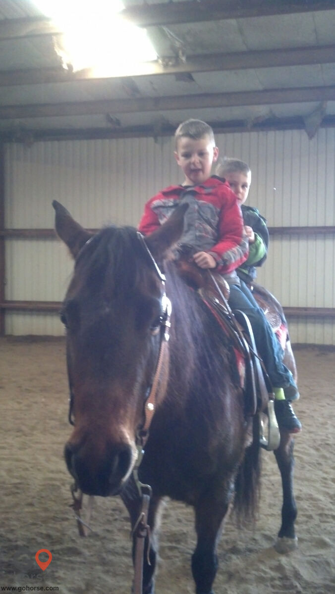 Circle C Ranch Horse stables in Council Bluffs IA 7
