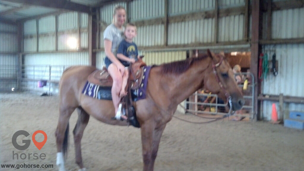Circle C Ranch Horse stables in Council Bluffs IA 1