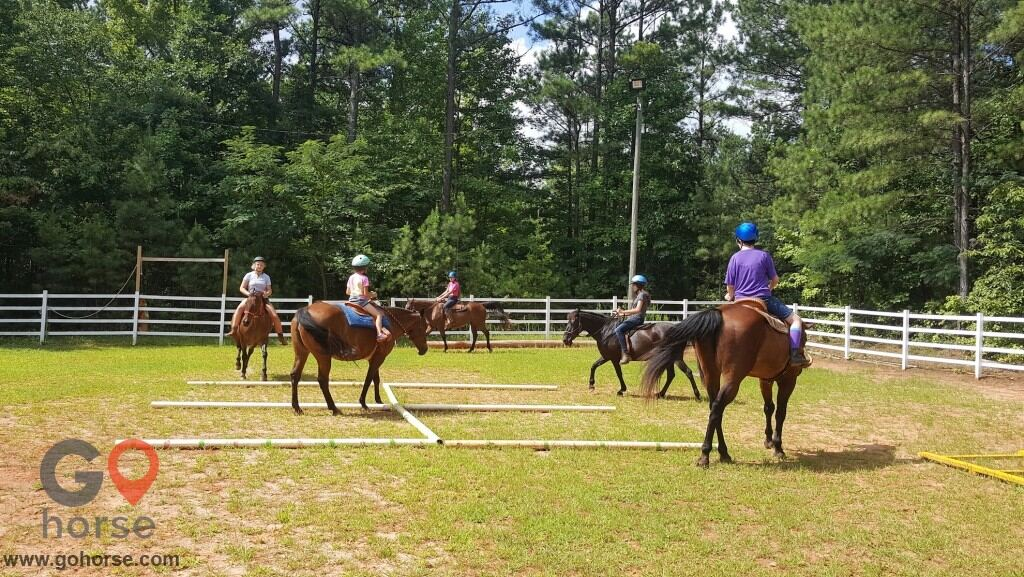 LauraLeigh Farms Horse stables in Dallas GA 1