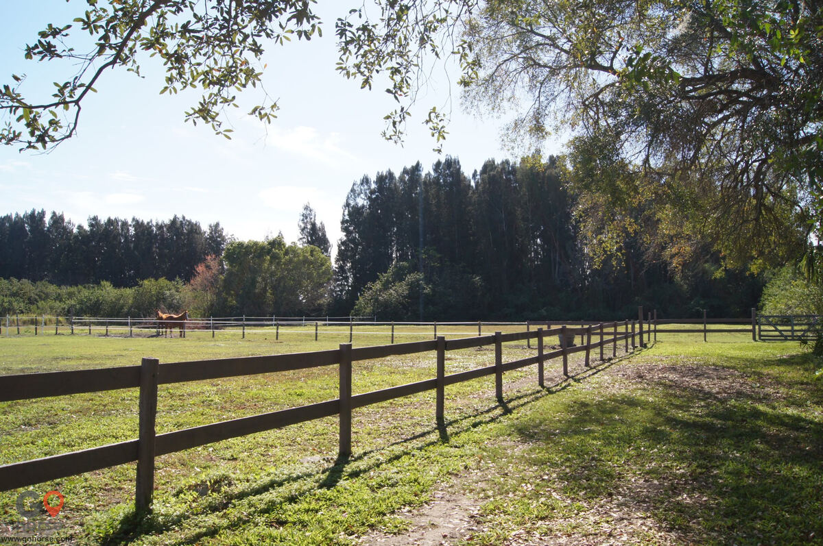 Top Equine Pro/ V Oaks Stable Horse stables in Merritt Island FL 4