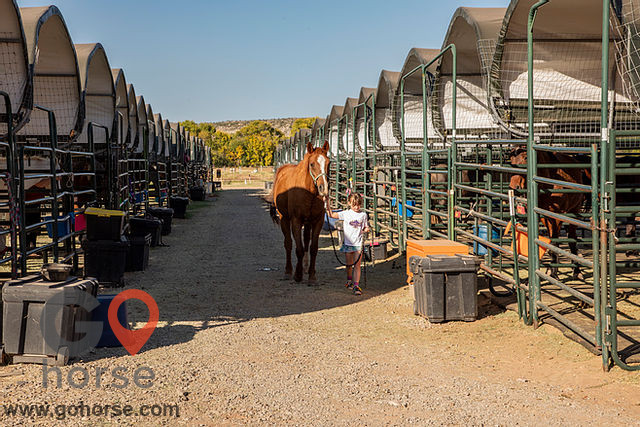 Future Hope Equestrian Horse stables in Clarkdale AZ 6