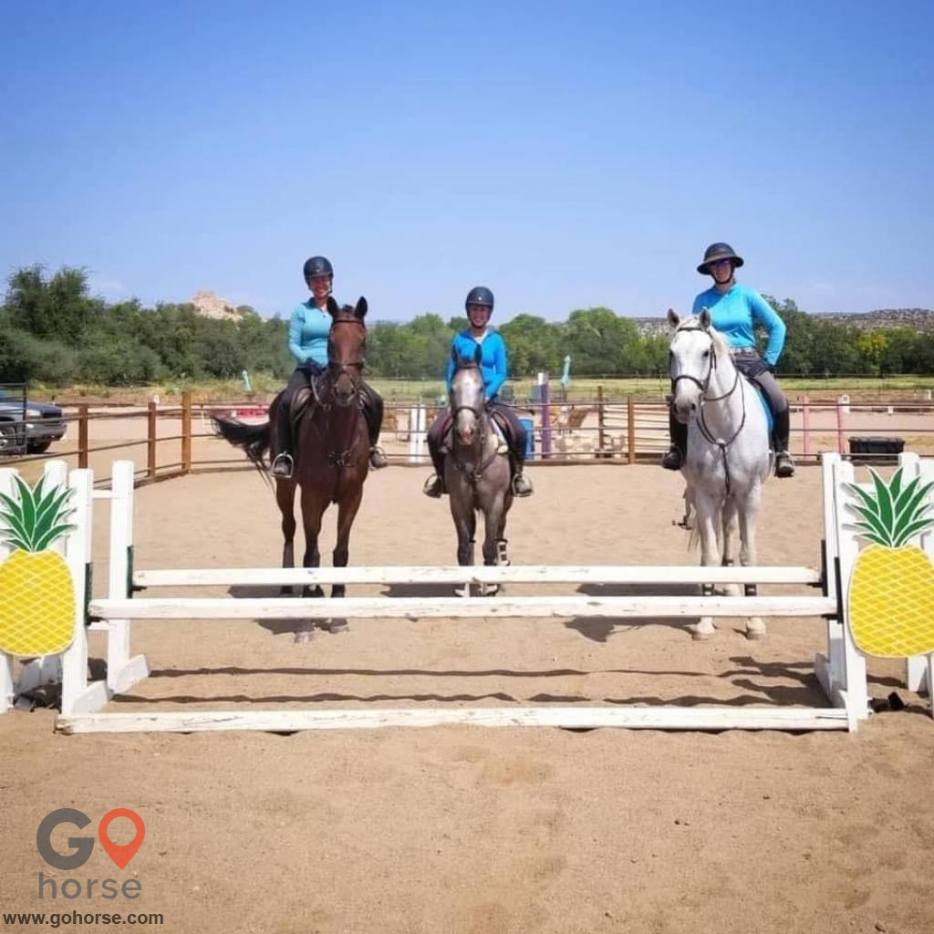 Future Hope Equestrian Horse stables in Clarkdale AZ 1