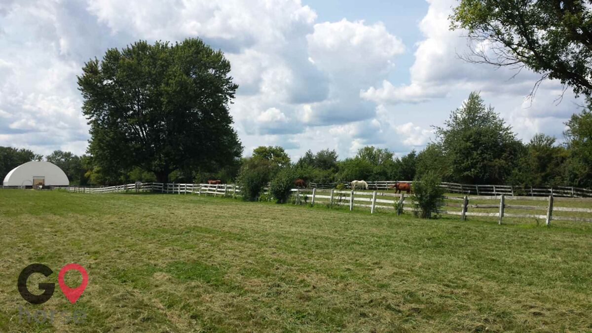 Meadow View Equestrian Center - Home of FTEA Horse stables in Wayne IL 1