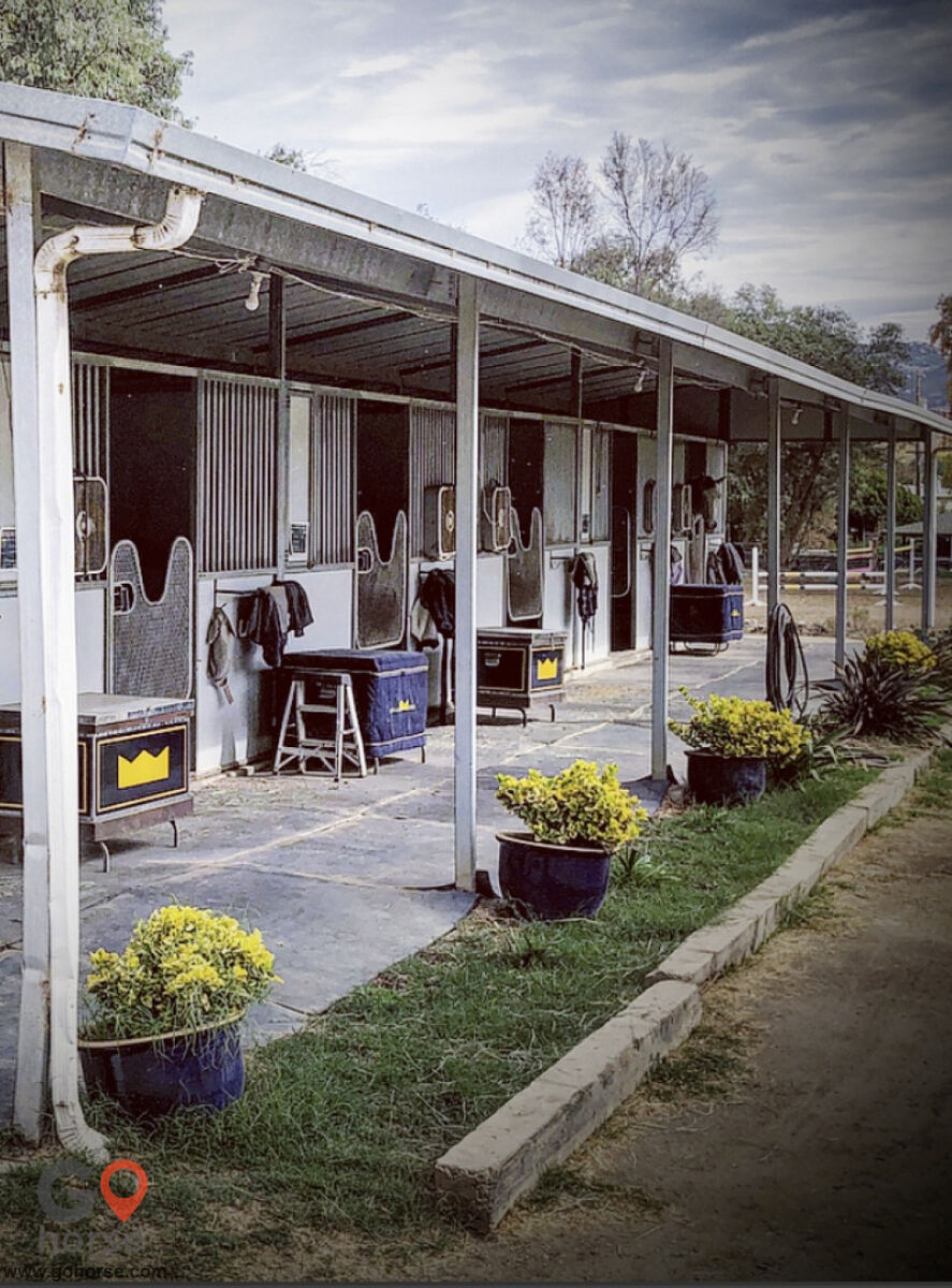 Royal Horses Stables Horse stables in San Marcos CA 8