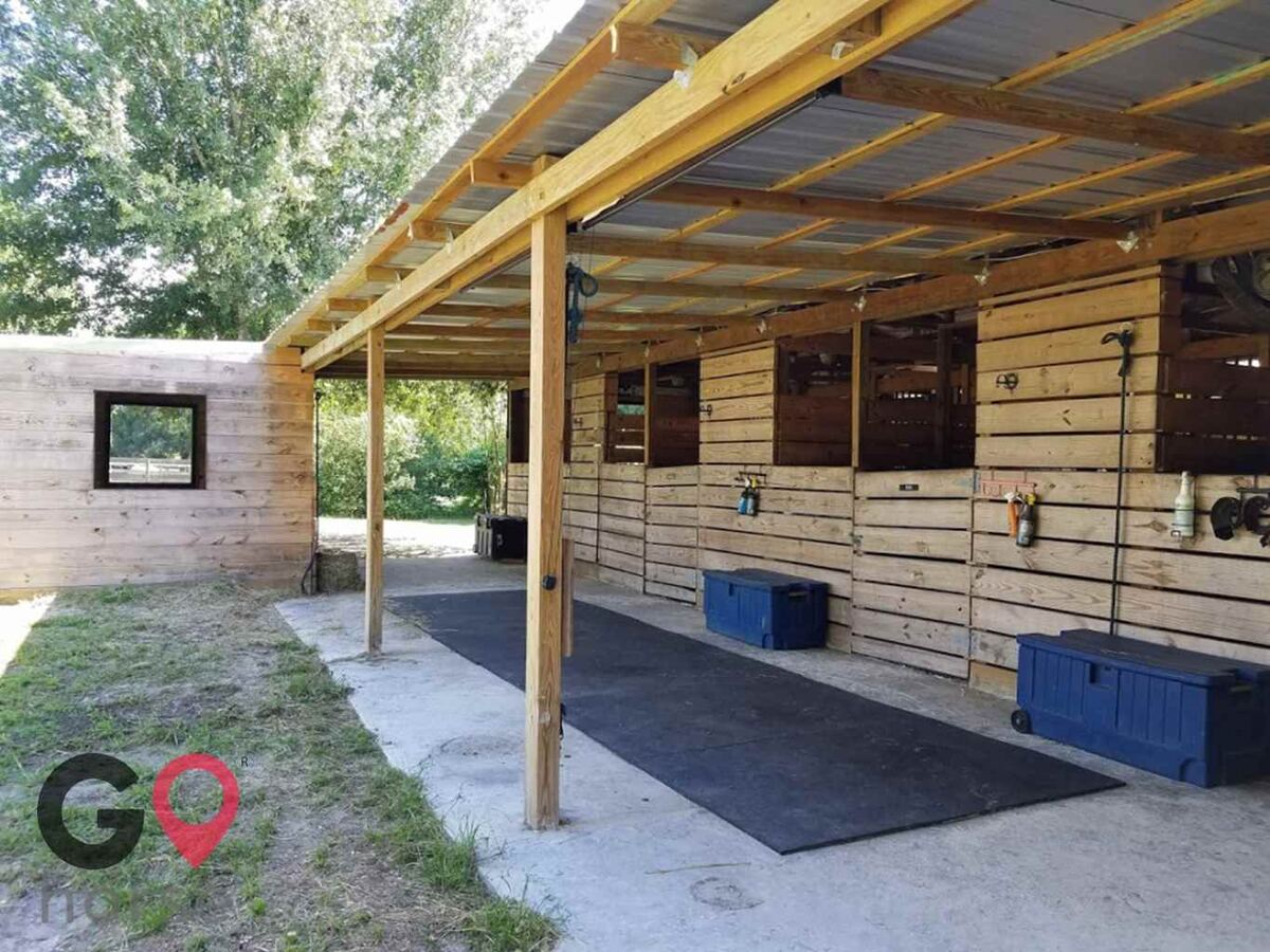 Ginger Hollow Farm Horse stables in Land O Lakes FL 3