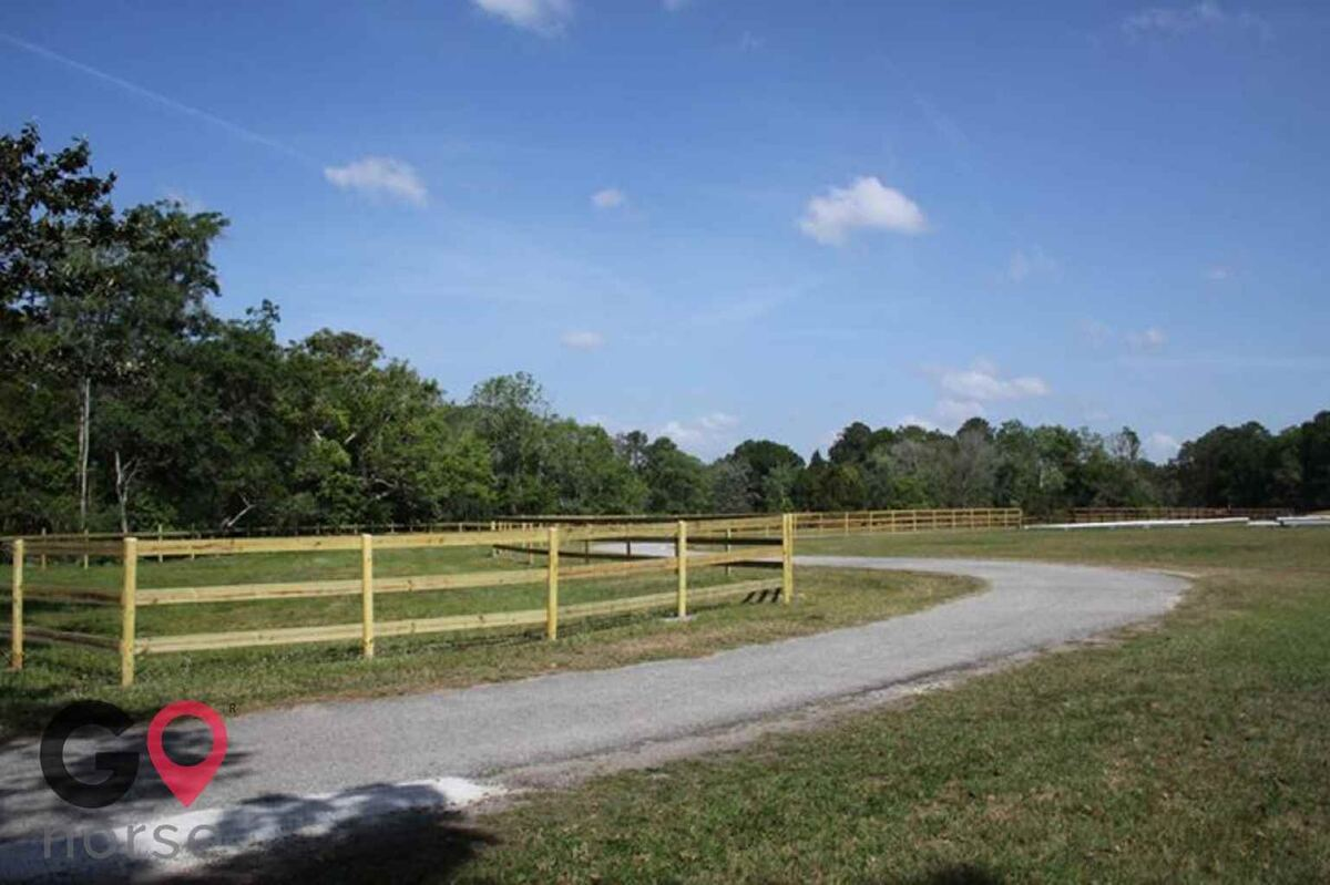 Ginger Hollow Farm Horse stables in Land O Lakes FL 4