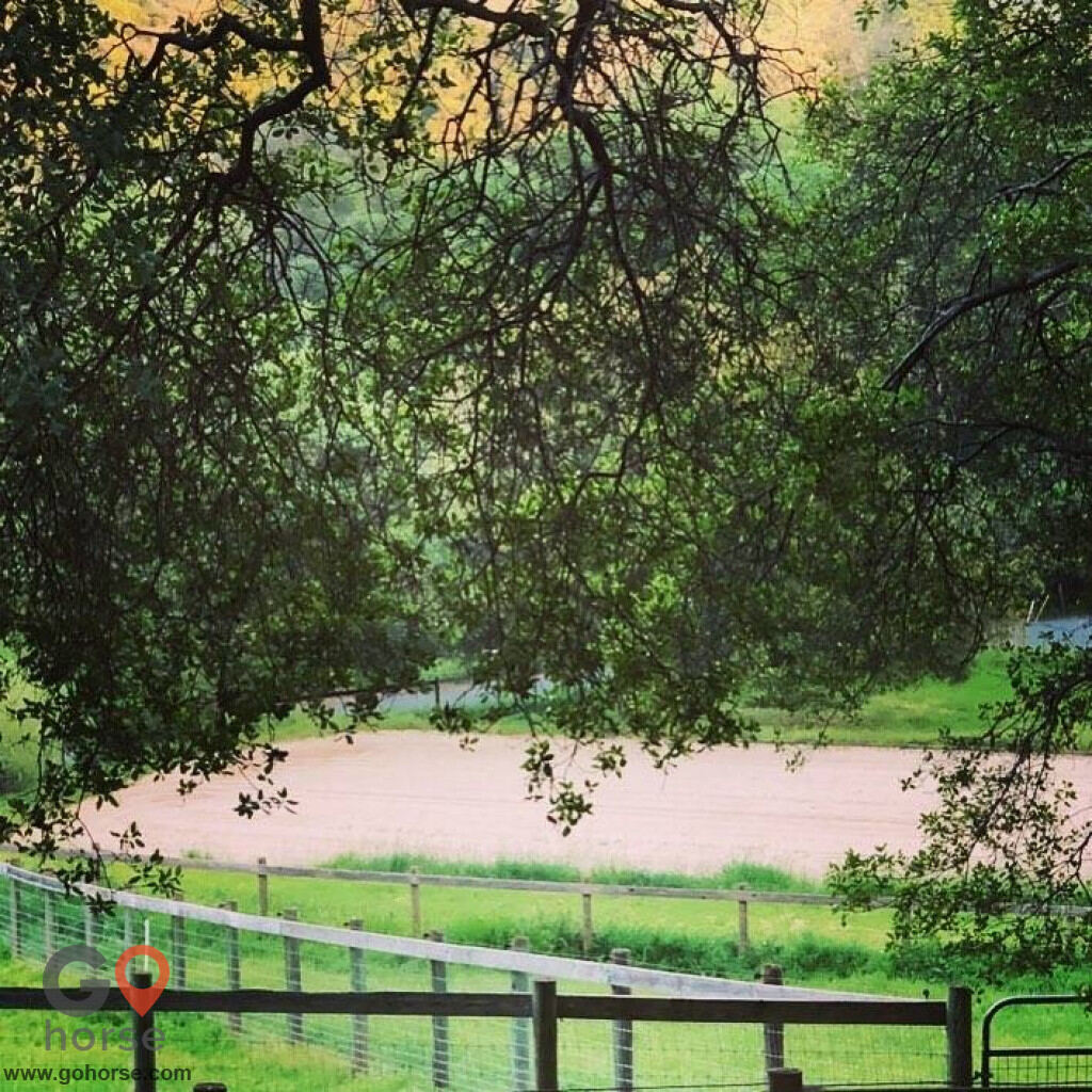 Folly Farms Horse stables in Newcastle CA 3