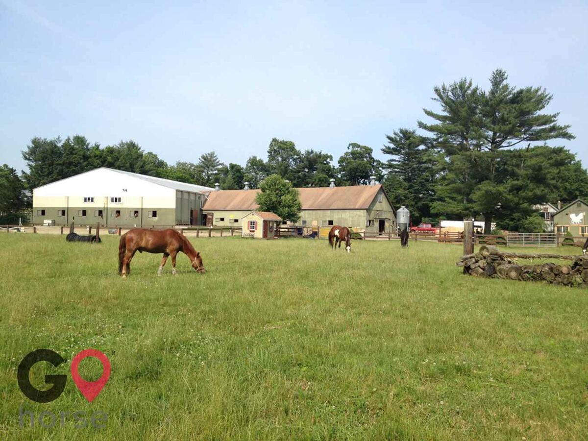 Tucker-Brook farm Horse stables in Milford CT 1