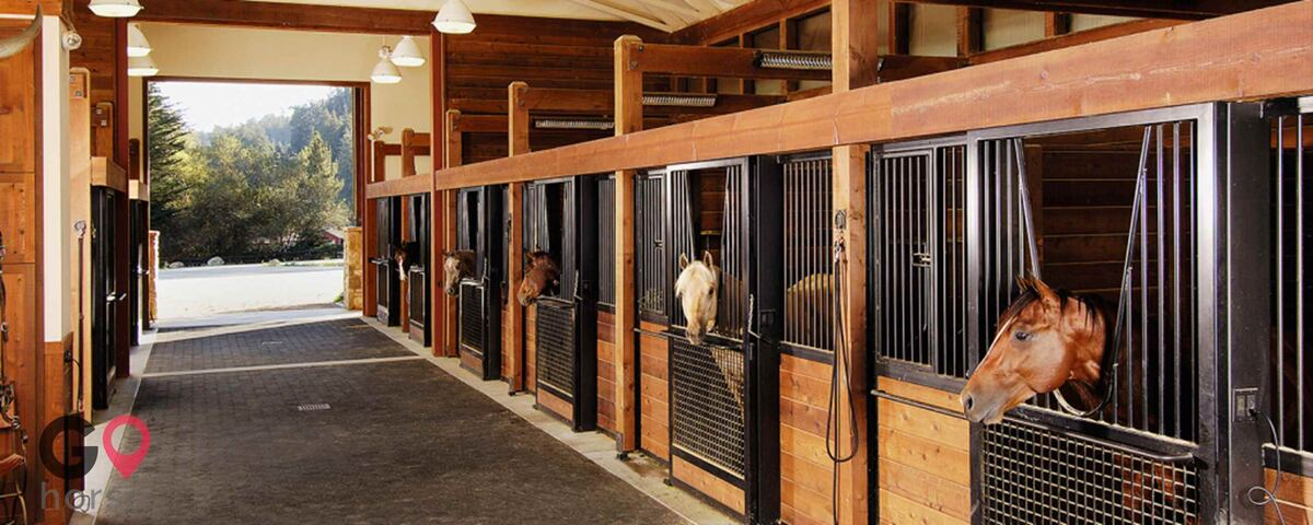 M & R Ranch Horse stables in Ellabell GA 1